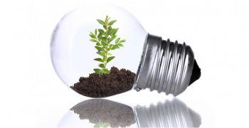 Científicos logran realizar fotosíntesis artificial de manera más eficaz que una planta